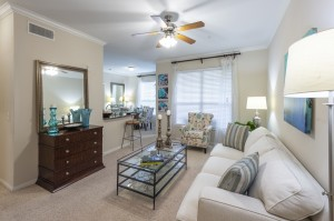 Two Bedroom Apartments for Rent in Northwest Houston, TX - Model Living Room